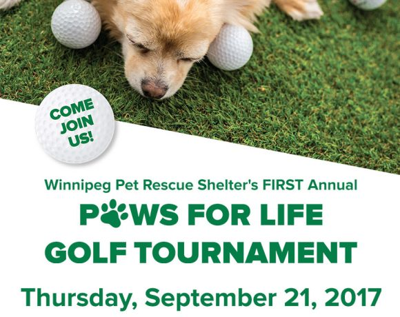Winnipeg-Pet-Rescue-Golf-Tournament-Event