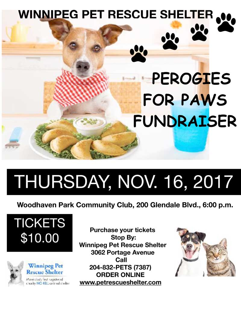 Perogies for Paws